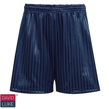 Picture of Shadow Stripe Shorts - Navy