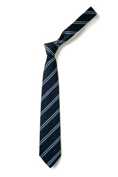Picture of Ties - Samares