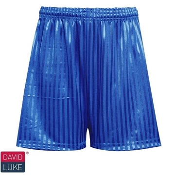 Picture of Shadow Stripe Shorts - Royal