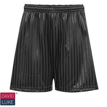 Picture of Shadow Stripe Shorts - Black