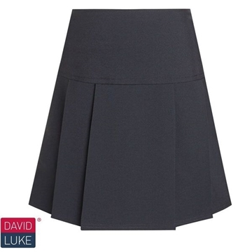 Picture of Skirts -  David Luke (Pleated)