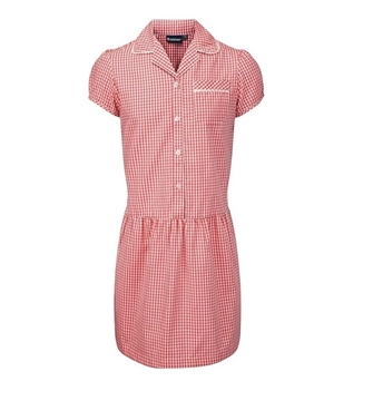 Picture of Red Gingham Dress Banner - Ashley