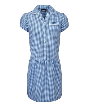 Picture of Blue Gingham Dress Banner - Ashley