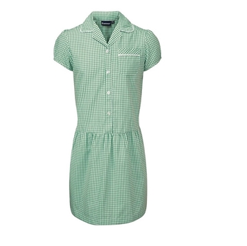 Picture of Green Gingham Dress Banner - Ashley