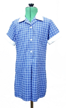 Picture of Summer Dress - Beaulieu Primary