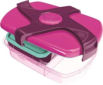 Picture of Concepts Range Lunch Box - Pink
