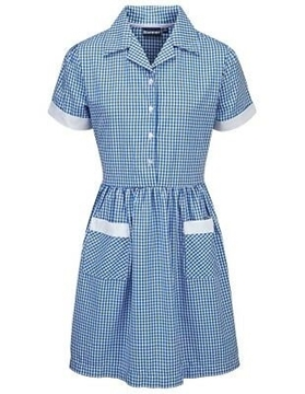 Picture of Ayr Button Front Corded Gingham Dress